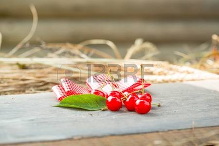 Red Ribbon Berry Images & Stock Pictures. Royalty Free Red Ribbon.