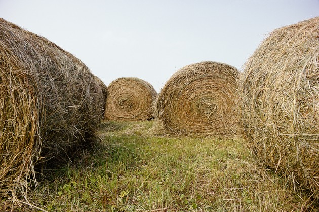 Hay Field Clipart.