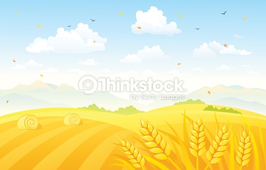 Autumn Fields Background Vector Art.