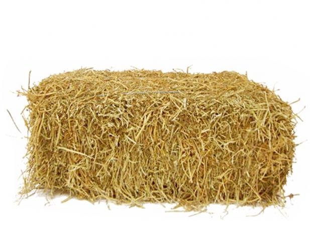 PNG Hay Transparent Hay.PNG Images..