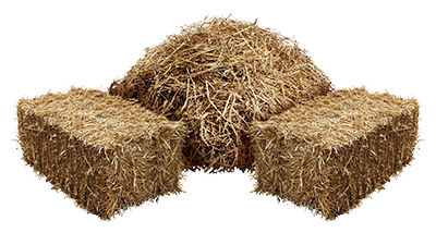 Hay PNG Images.