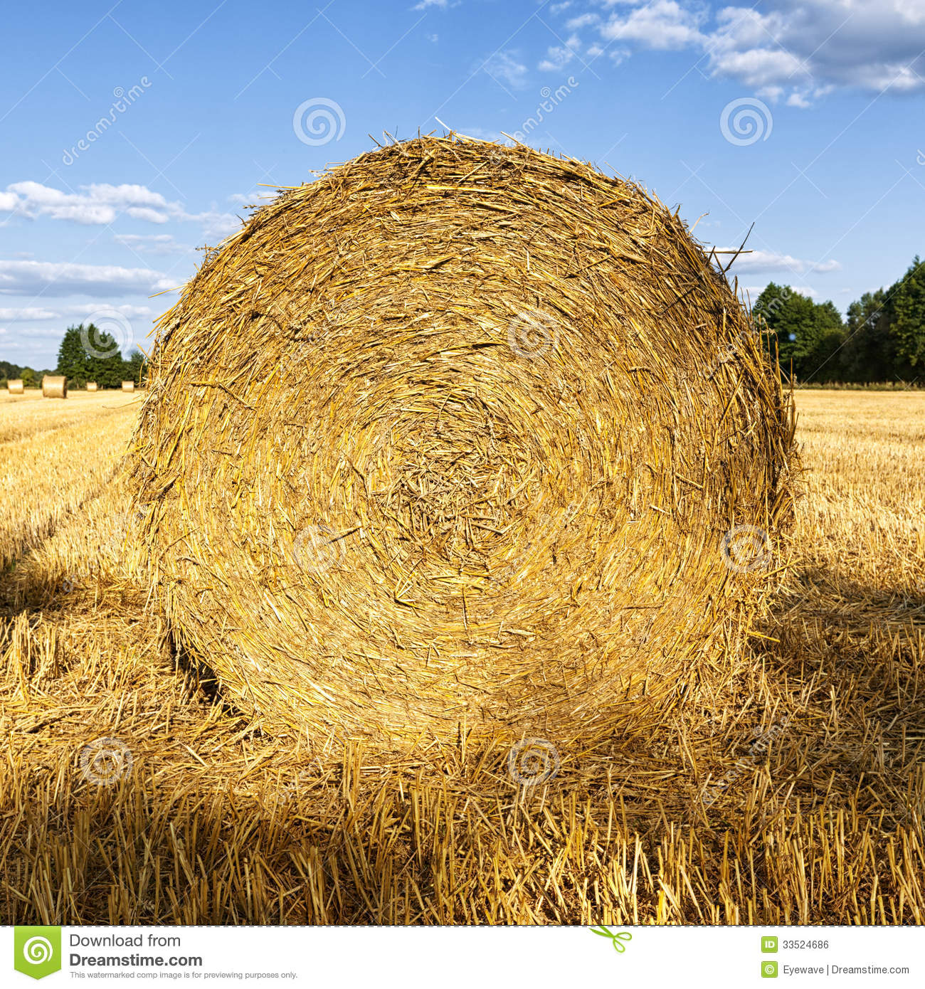 Hay Roll On Wheat Field In Late Summer Royalty Free Stock Image.