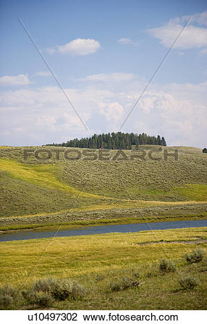 Stock Photo of Hayden valley along yellow river at Yellowstone.