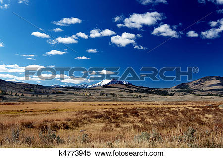 Stock Image of Yellowstone National Park: Hayden Valley with.