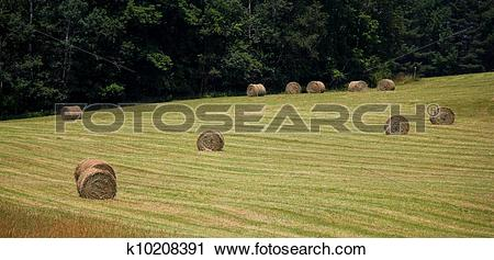 Stock Photography of new england hayfield k10208391.