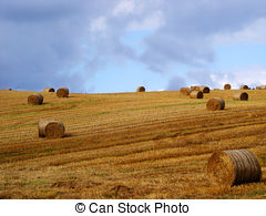 Hayfield Stock Photos and Images. 1,964 Hayfield pictures and.