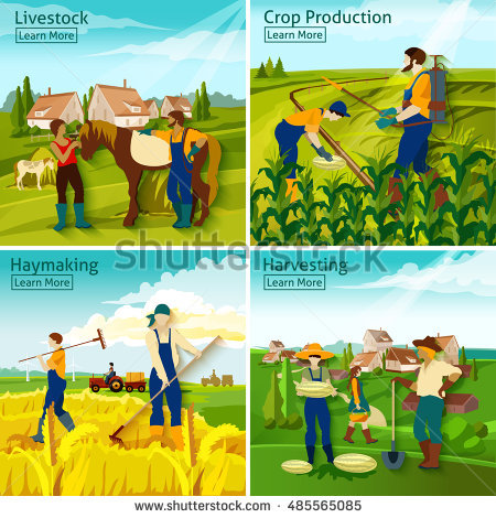 Haymaking Stock Images, Royalty.