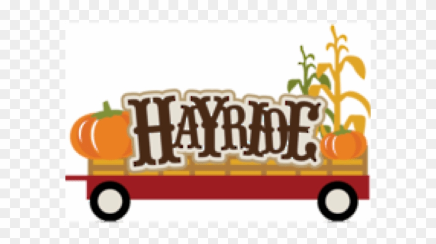 Corn Maze And Hay Rides In South Florida.
