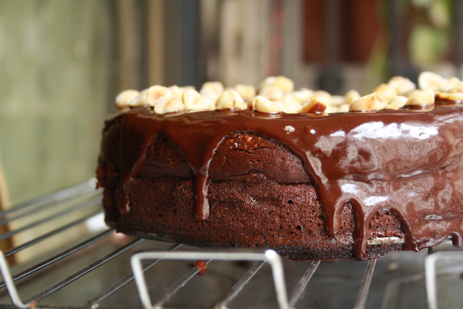 Flourless Chocolate Hazelnut Cake.