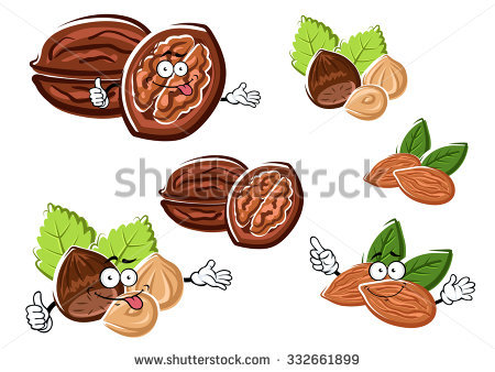 Walnut Cartoon Stock Images, Royalty.