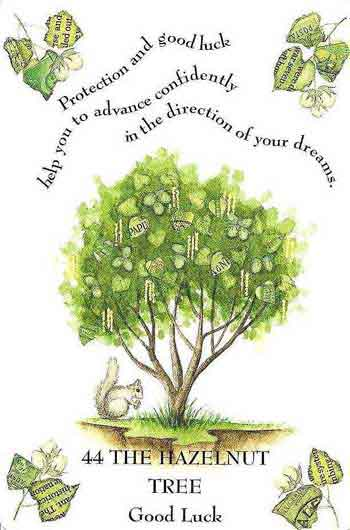 1000+ images about ❀Tree Magic❀ on Pinterest.
