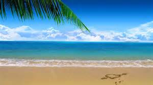Wallpapers Beach Clip Art Browse Clipart Hd 800x800.