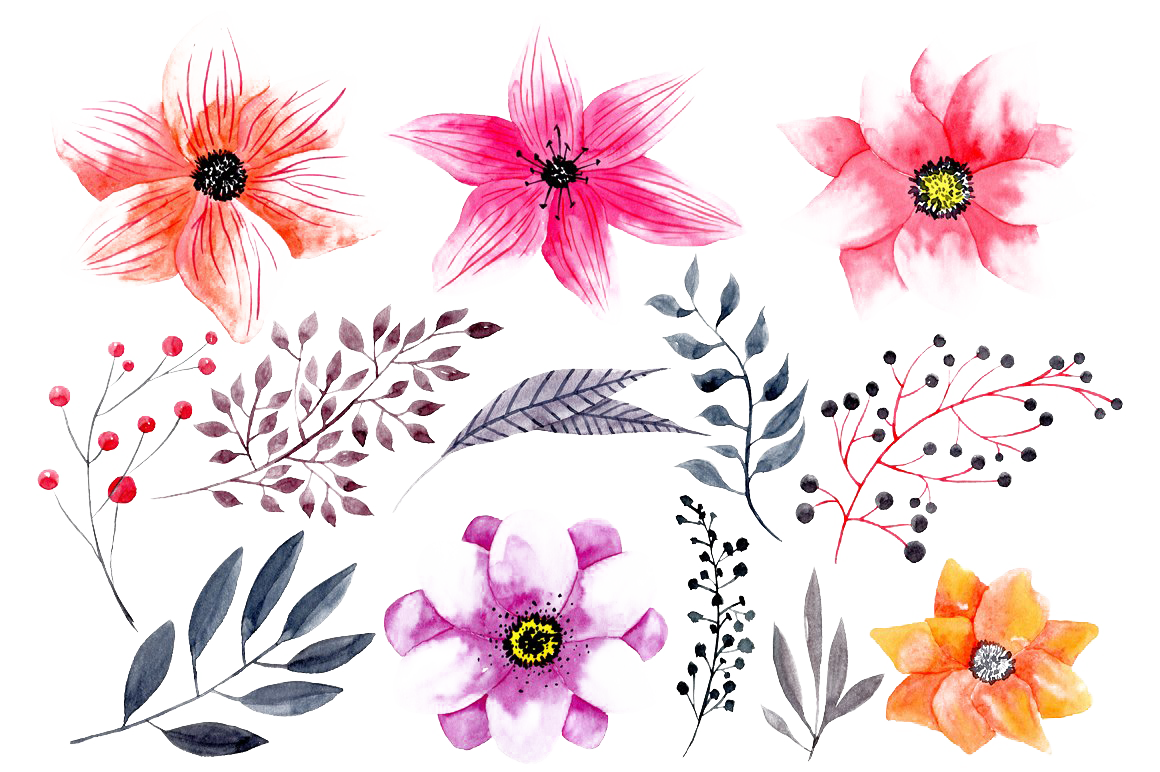 Watercolor Flowers PNG HD Photo.