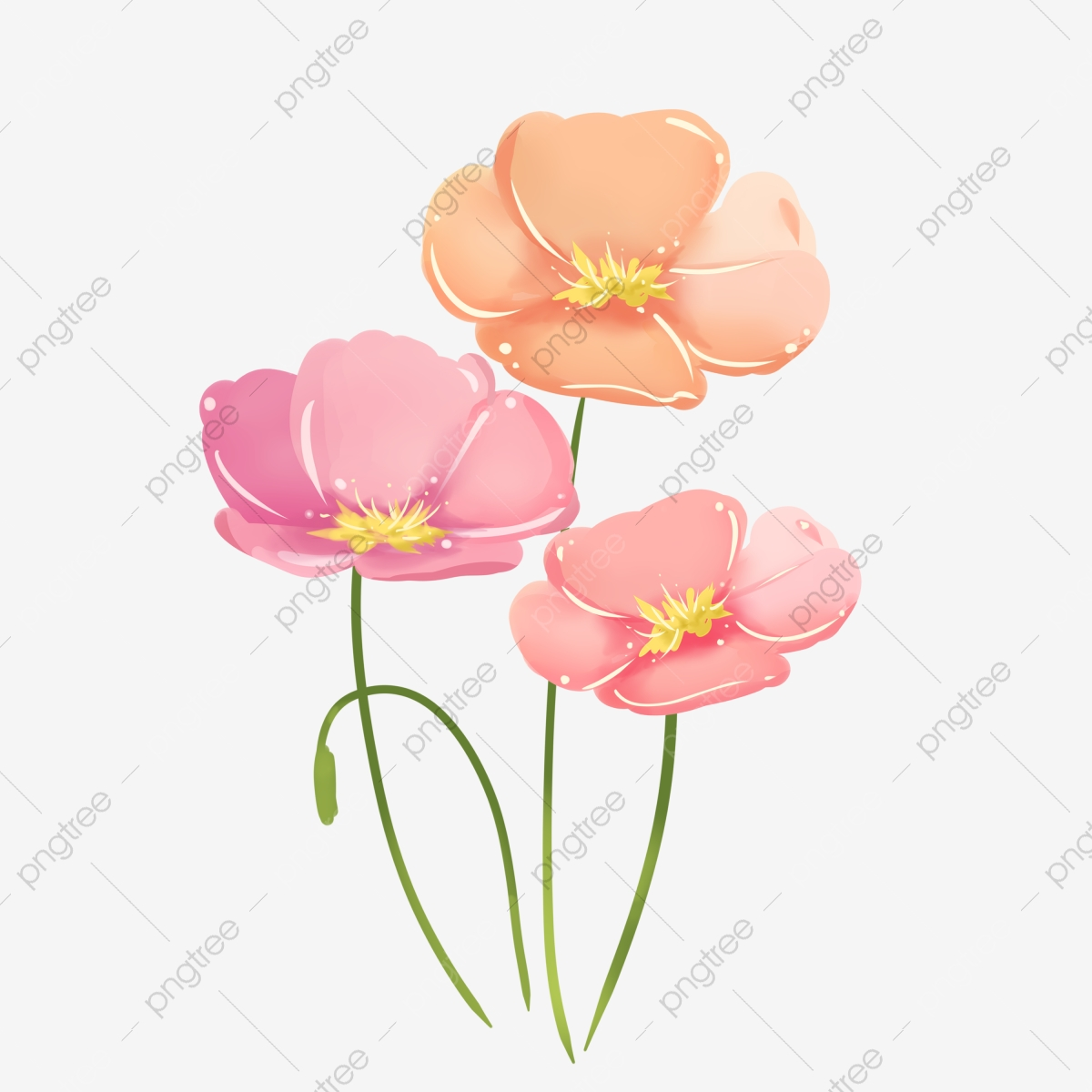 Hd Flowers Of Various Colors, Flowers, Png Picture Material, Free.