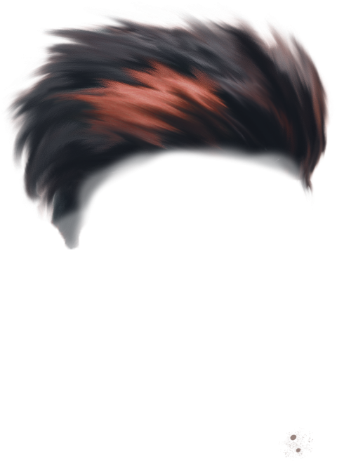 Download Free png Hair Png New Photo #905 AddPng.