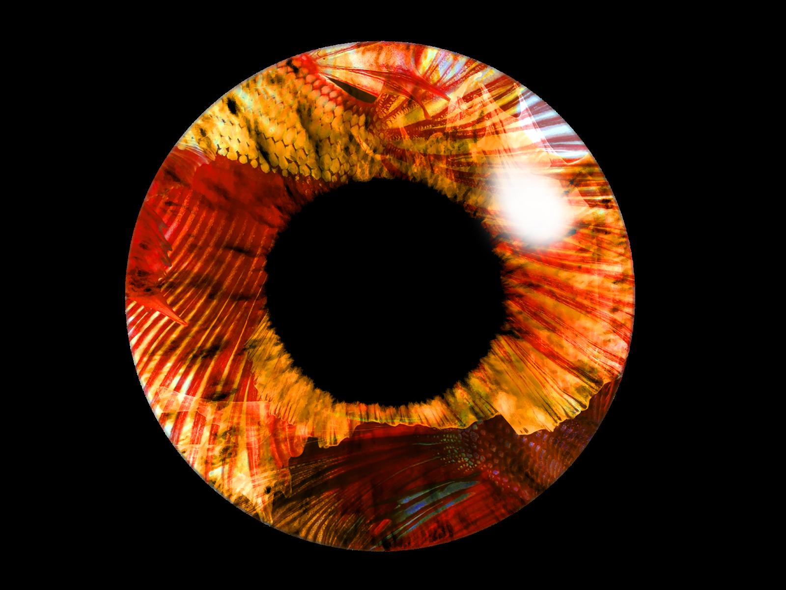 Eye Lens PNG Image HD.