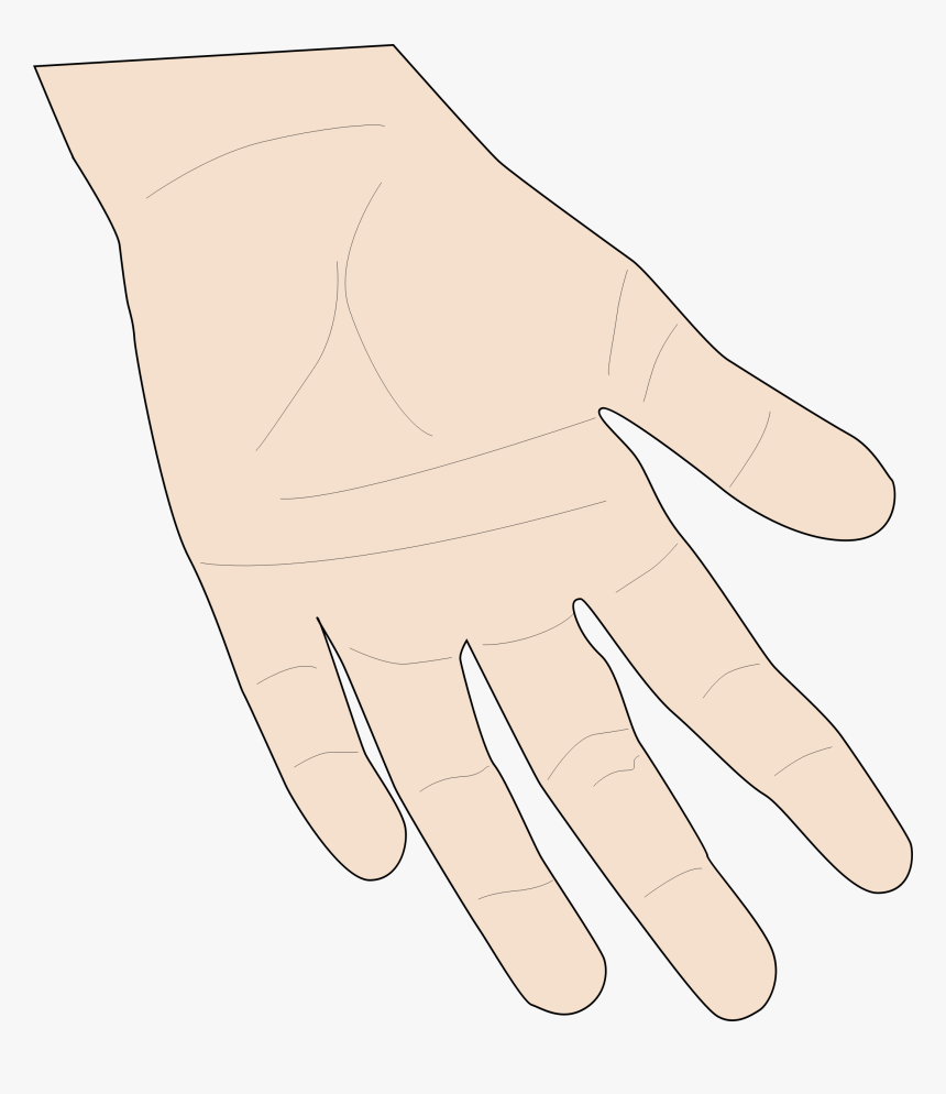 Transparent Skin Clipart.
