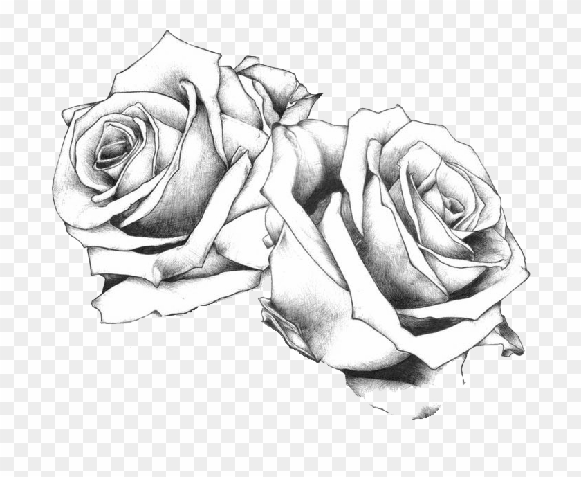 Tattoo Flash Art Drawing Rose Free Frame Clipart.
