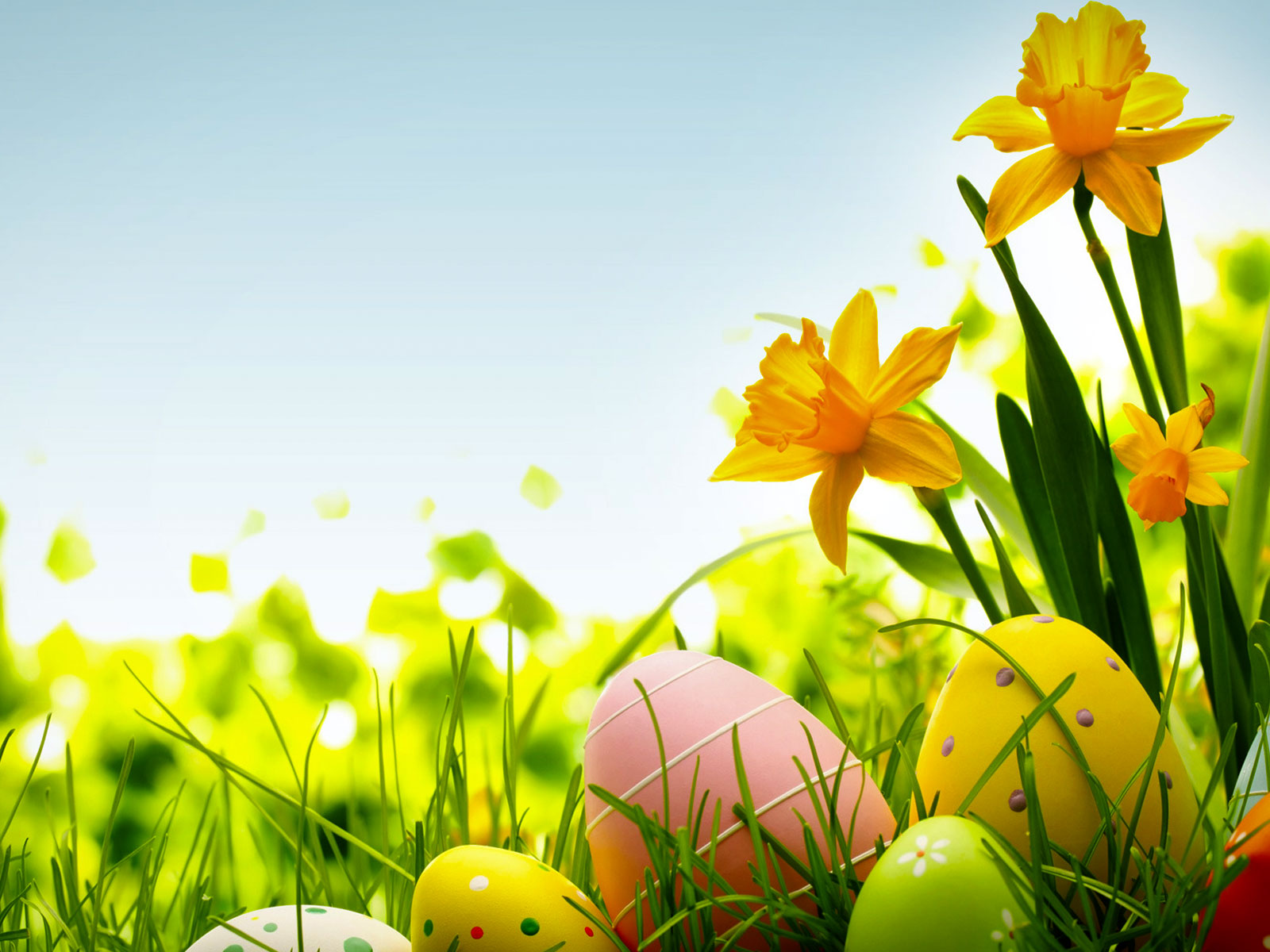 HDR Colorful Easter Egg Background.