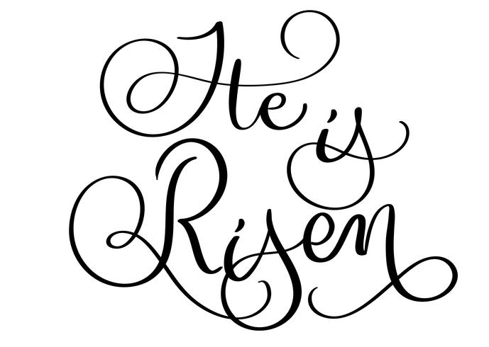 He is risen text on white background. Hand drawn vintage.
