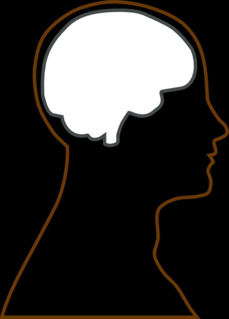 head and brain clipart #4