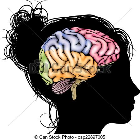 Brain woman head Illustrations and Clip Art. 1,740 Brain woman.