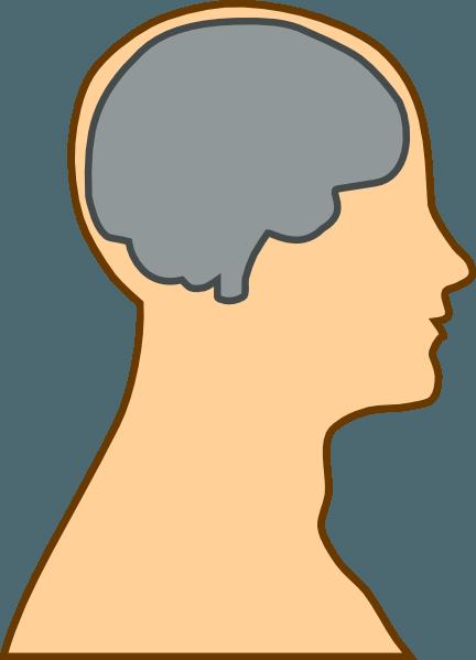 Brain in Head Clipart.