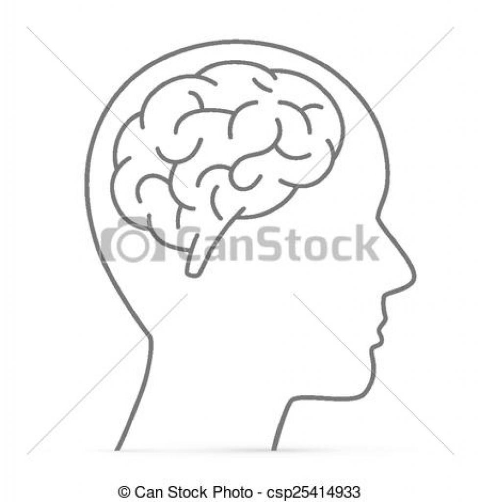 head with brain clipart head with brain clipart vectors of.