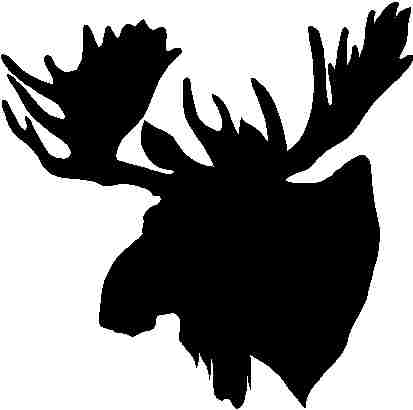 Pics For > Black And White Moose Head.