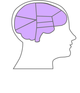 Head And Brain Outline Clip Art at Clker.com.