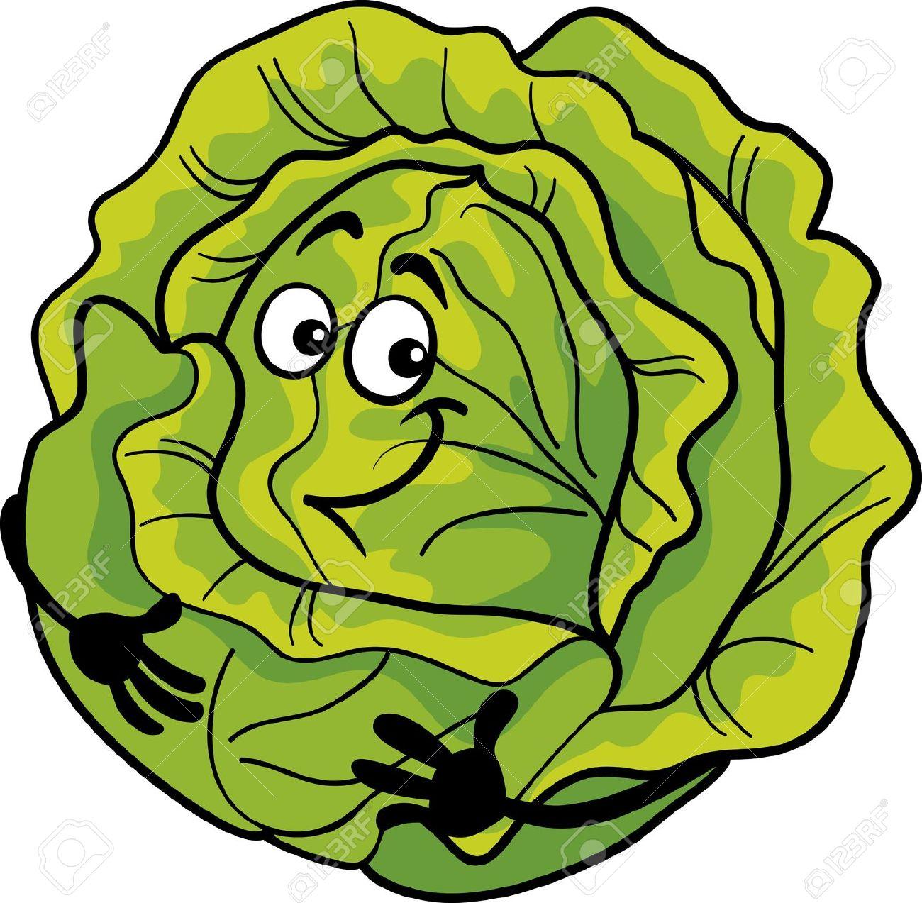 Lettuce head clipart.