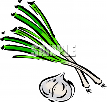 Clipart Picture Of Scallions And A Head Of Garlic.