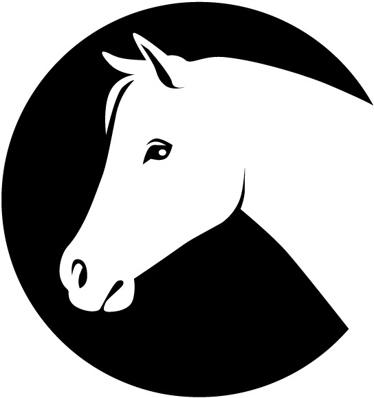 Fine Friesian Horse Head Coloring Pages Model Example Resume