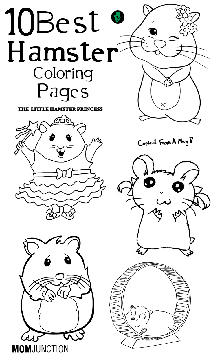 head pat hamster clipart Clipground