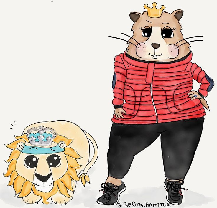204 Best images about HRH Marvin the Hamster on Pinterest.