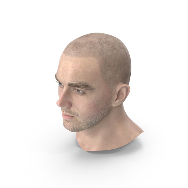Male Head PNG Images & PSDs for Download.