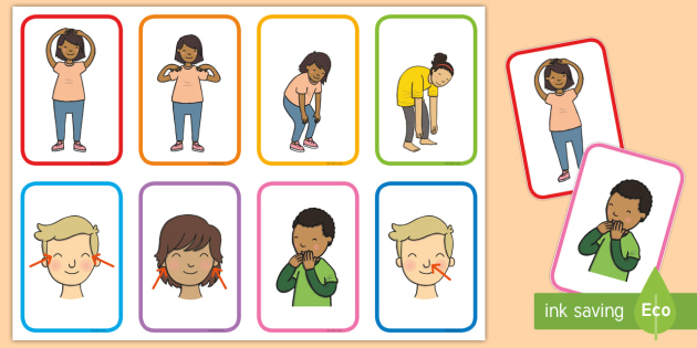 Head Shoulders Knees and Toes Prompts (teacher made).