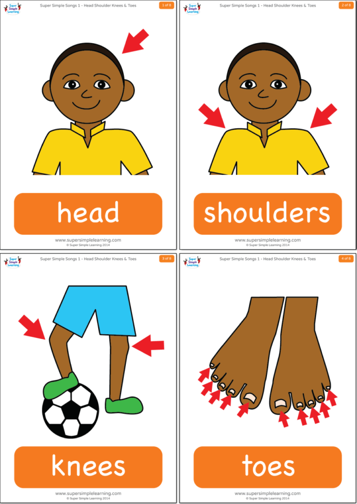 Head Shoulders Knees & Toes Flashcards.