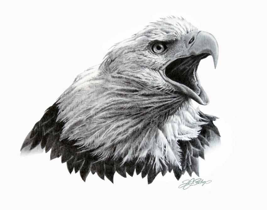 Eagle Head.