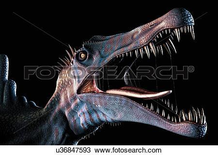 Drawing of Spinosaurus Head Study u36847593.