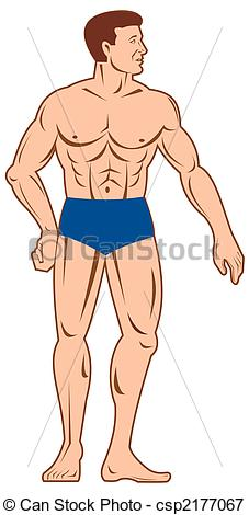 Stock Illustrations of Male full body with head turned to side.