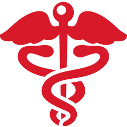 Health Sign red Icon.