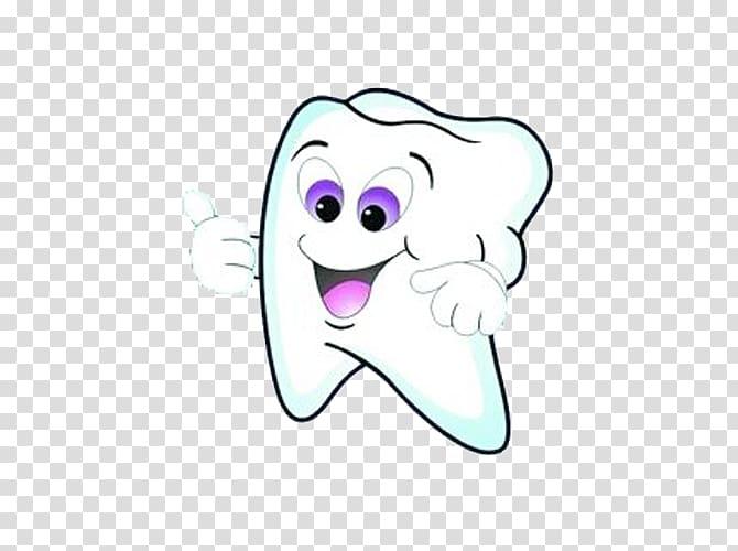 Tooth Mouthwash Dental public health Dentist, Healthy teeth.