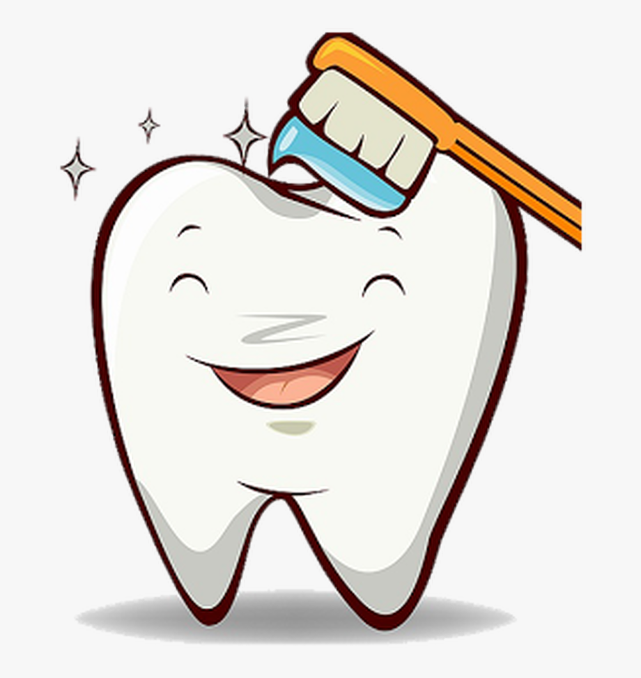 Tooth Png Healthy.