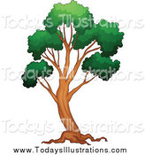 Royalty Free Stock New Designs of Trees.