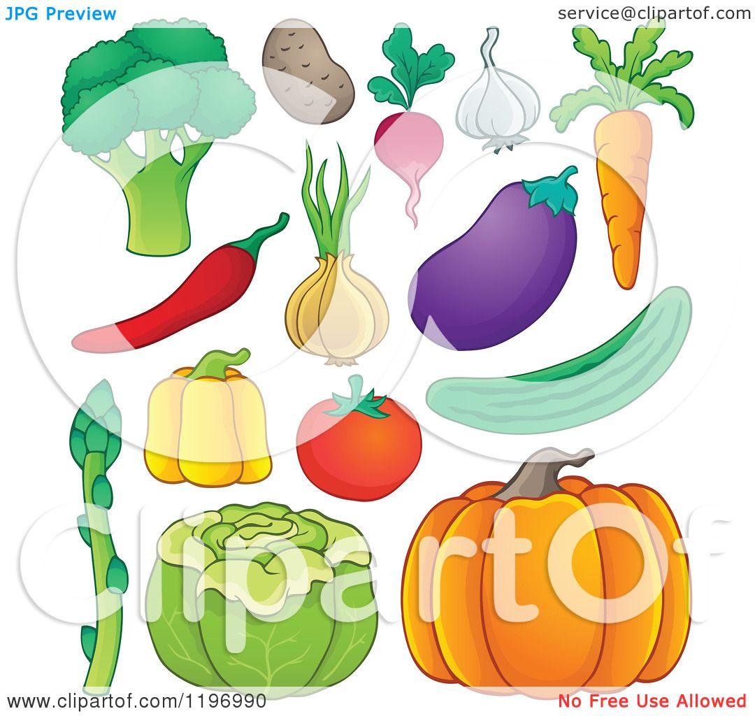 Cartoon of Healthy Vegetables.