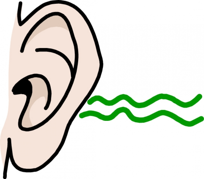 Hearing clipart free.