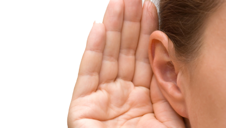 Ear PNG image free download.