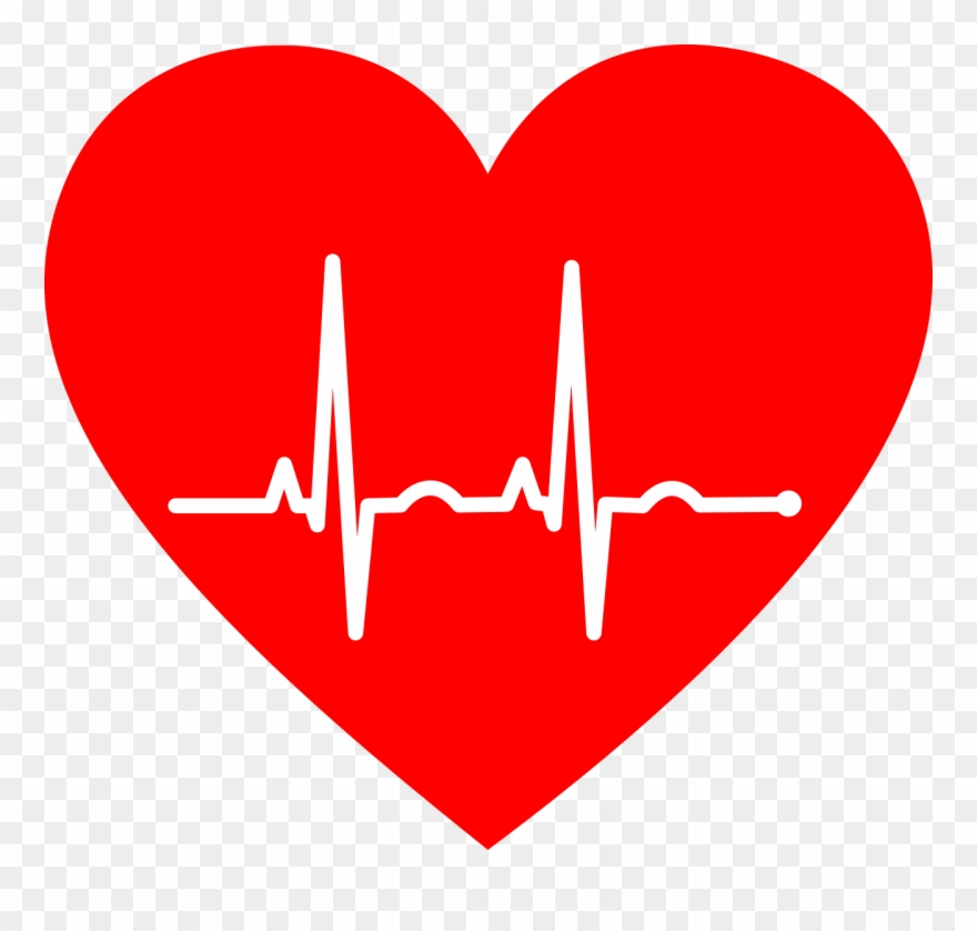 Pulse Electrocardiography Heart Rate Cardiovascular.