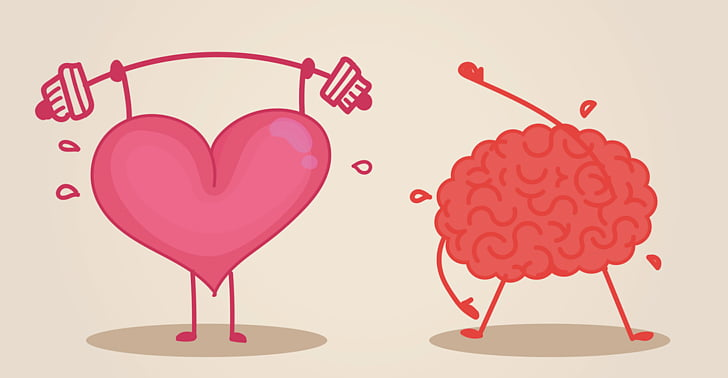 Brain Heart Physical exercise Cognitive training , Strong.